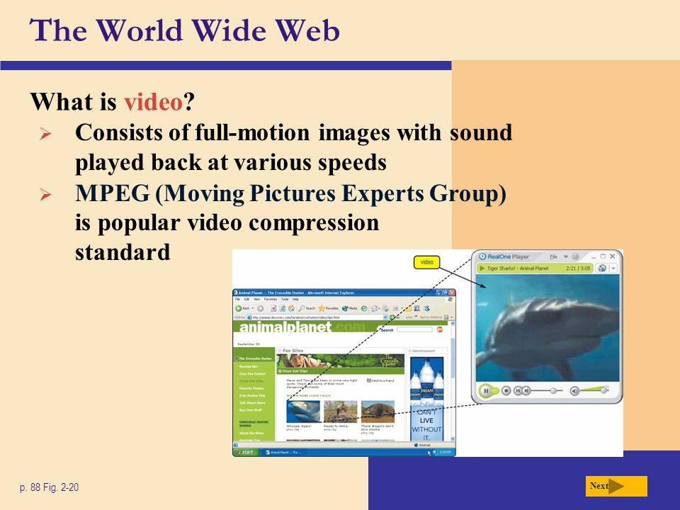 The World Wide Web What is video? p. 88 Fig. 2-20 Next Consists of full-motion images with sound played back at various speeds MPEG (Moving Pictures E