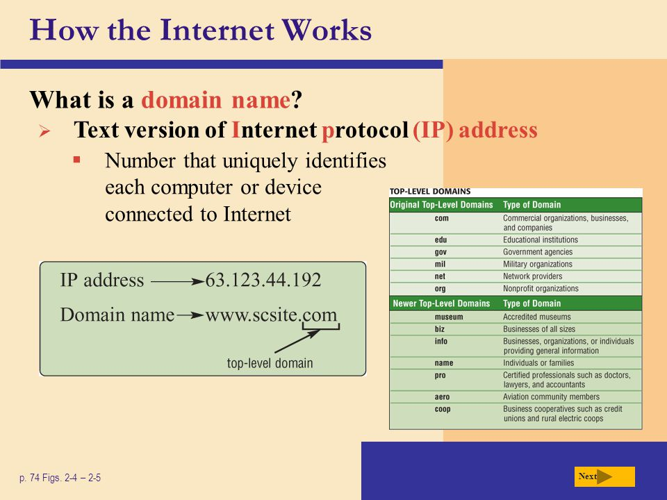 The World Wide Web What is a Web browser.p.