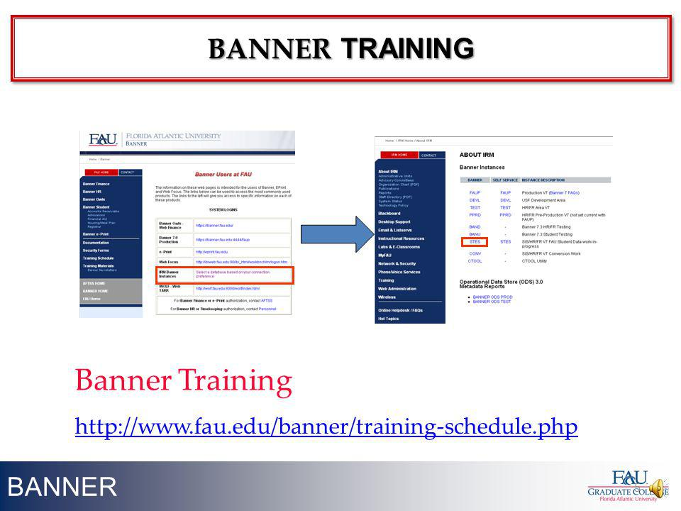 BANNER 5 http://www.fau.edu/banner/training-schedule.php Banner Training BANNER TRAINING