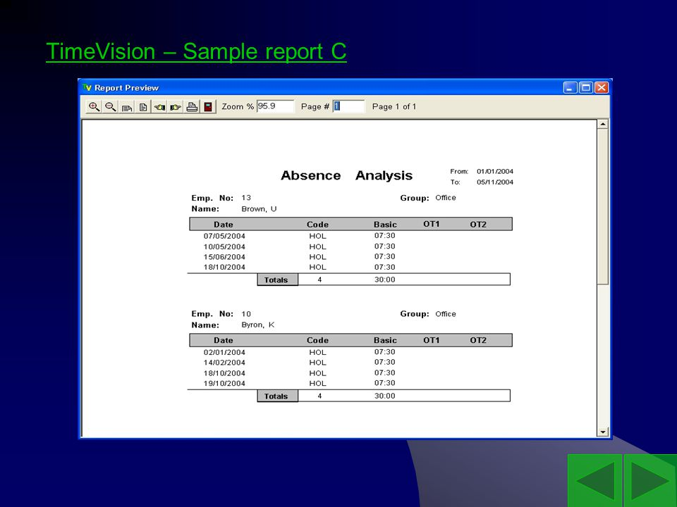 TimeVision – Sample report C