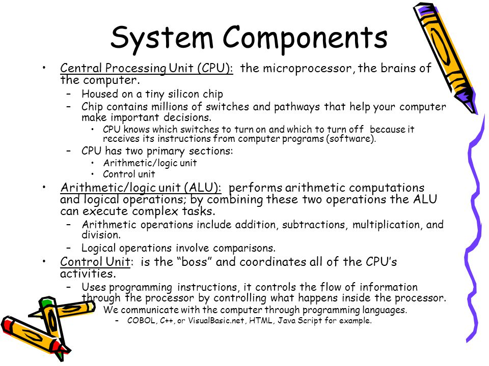 System Components Central Processing Unit (CPU): the microprocessor, the brains of the computer. –Housed on a tiny silicon chip –Chip contains million
