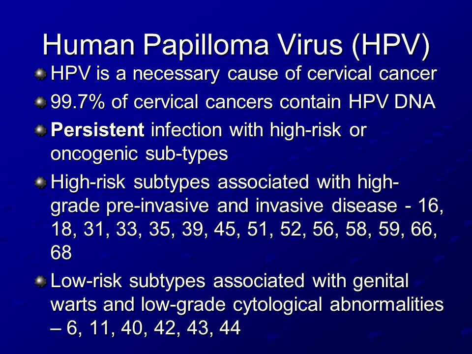 Human Papilloma Virus (HPV) HPV is a necessary cause of cervical cancer 99.7% of cervical cancers contain HPV DNA Persistent infection with high-risk