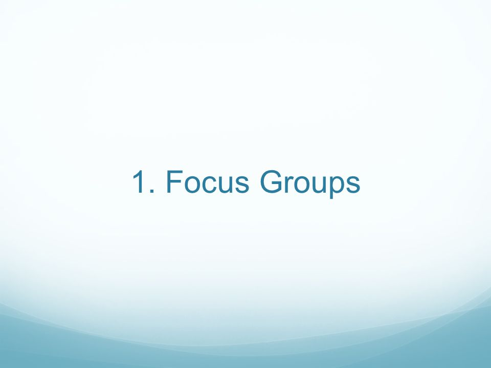 1. Focus Groups