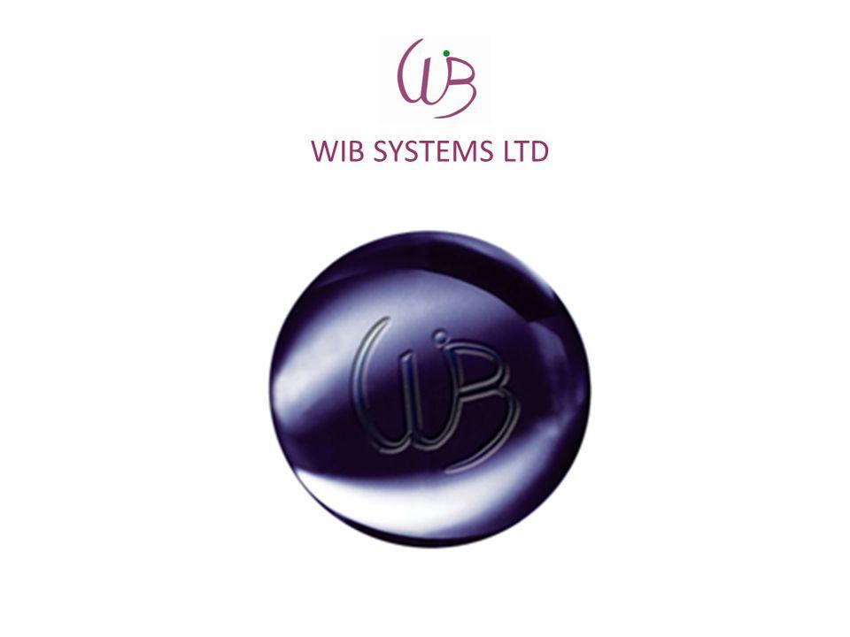 WIB SYSTEMS LTD