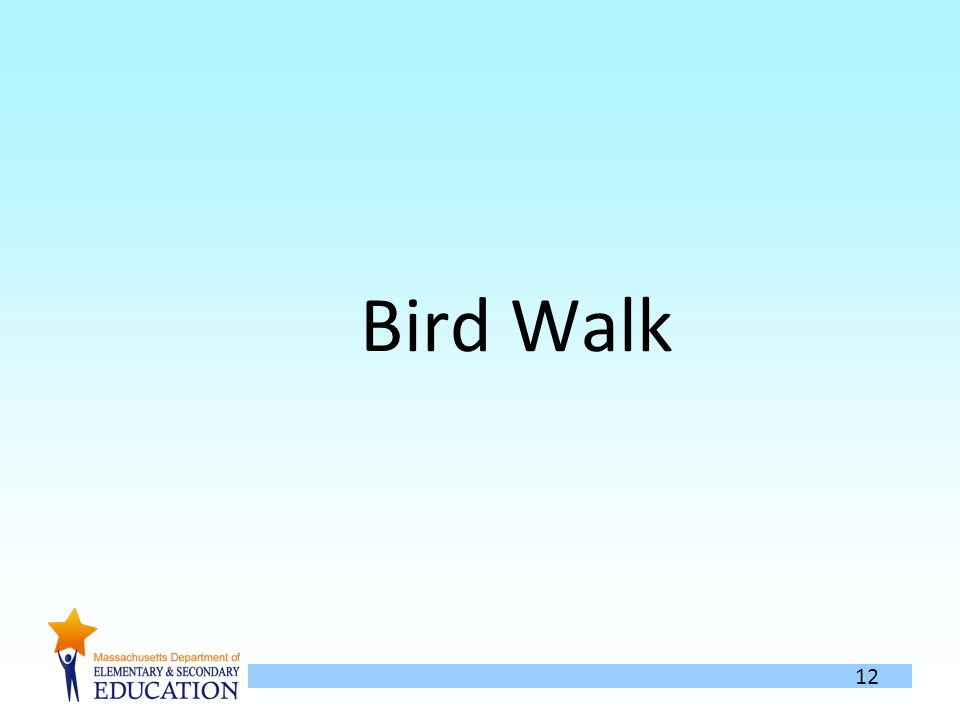 12 Bird Walk