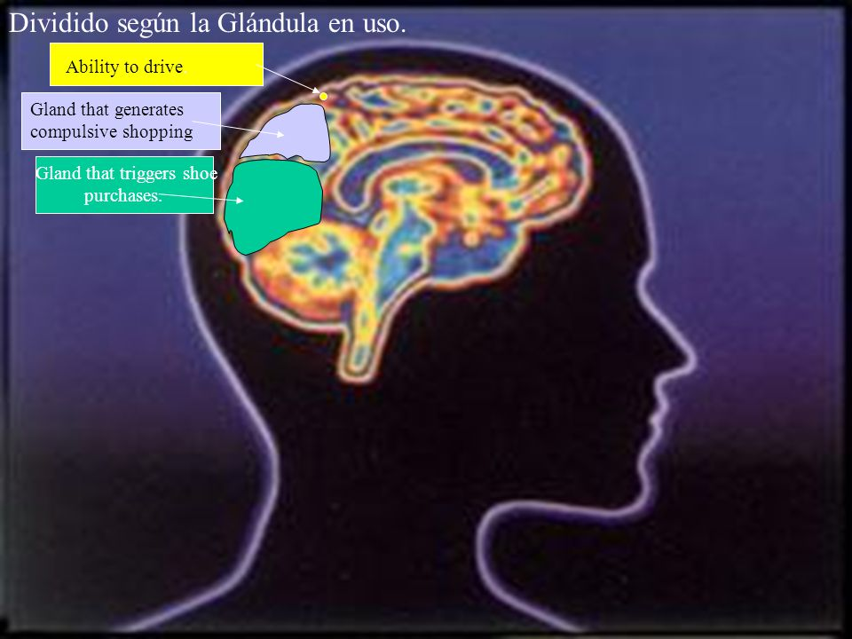 Dividido según la Glándula en uso. Gland that generates compulsive shopping. Ability to drive.