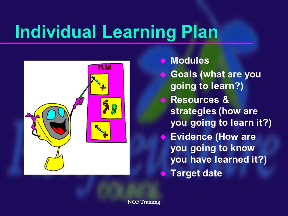 NOF Training Individual Learning Plan u Modules u Goals (what are you going to learn ) u Resources & strategies (how are you going to learn it ) u Evidence (How are you going to know you have learned it ) u Target date