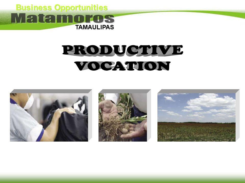 Business Opportunities TAMAULIPAS