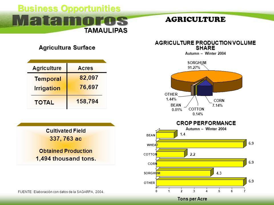 Business Opportunities TAMAULIPAS AGRICULTURE FUENTE: Elaboración con datos de la SAGARPA, 2004. Cultivated Field 337, 763 ac Obtained Production 1,49