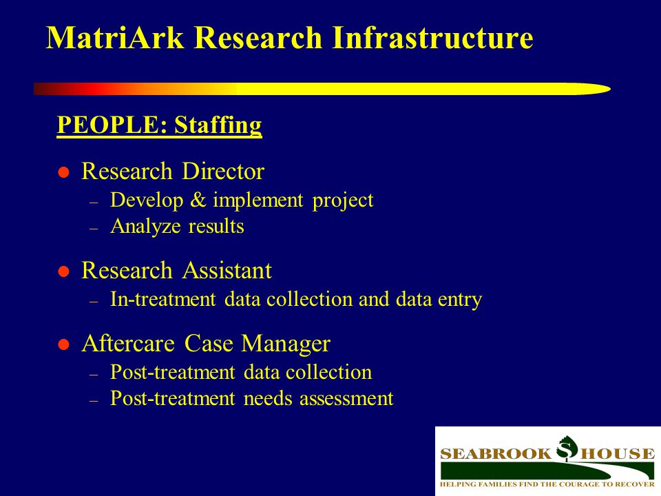 40 MatriArk Research Infrastructure PEOPLE: Staffing Research Director – Develop & implement project – Analyze results Research Assistant – In-treatme
