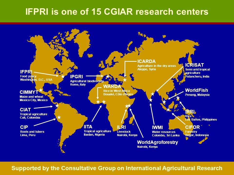 IFPRI is one of 15 CGIAR research centers CIAT Tropical agriculture Cali, Colombia CIMMYT Maize and wheat Mexico City, Mexico CIP Roots and tubers Lima, Peru IITA Tropical agriculture Ibadan, Nigeria IPGRI Agricultural biodiversity Rome, Italy ICARDA Agriculture in the dry areas Aleppo, Syria IWMI Water resources Colombo, Sri Lanka ILRI Livestock Nairobi, Kenya CIFOR Forestry Bogor, Indonesia IRRI Rice Los Baños, Philippines ICRISAT Semi-arid tropical agriculture Patancheru, India WorldFish Penang, Malaysia WARDA Rice in West Africa Bouaké, Côte dIvoire IFPRI Food policy Washington, D.C., USA WorldAgroforestry Nairobi, Kenya Supported by the Consultative Group on International Agricultural Research