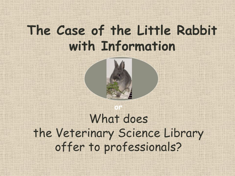 The Case of the Little Rabbit with Information or What does the Veterinary Science Library offer to professionals?