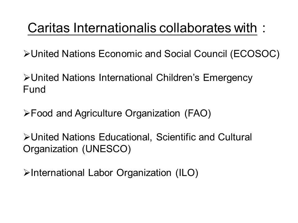 Caritas Internationalis collaborates with United Nations Economic and Social Council (ECOSOC) United Nations International Childrens Emergency Fund Fo