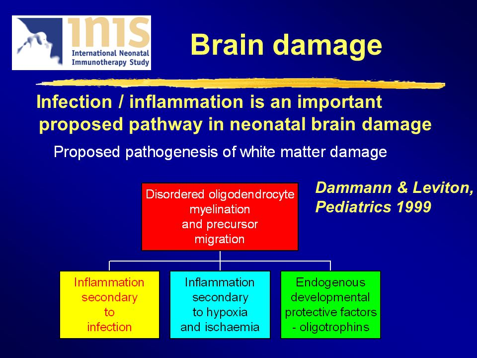 Brain damage Infection / inflammation is an important proposed pathway in neonatal brain damage Dammann & Leviton, Pediatrics 1999