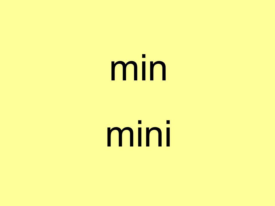 min mini