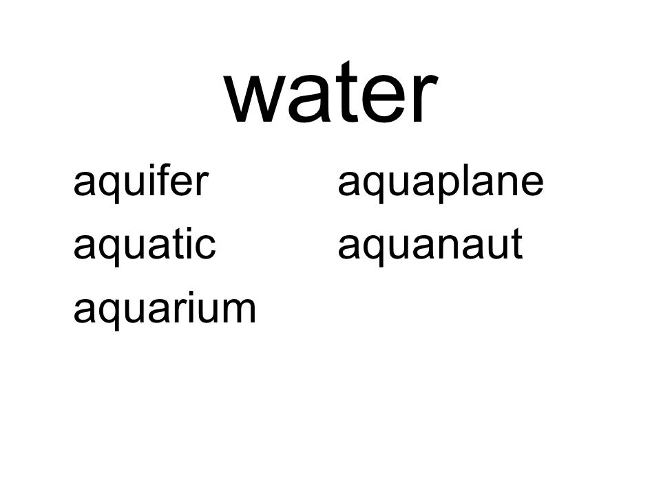 water aquiferaquaplane aquaticaquanaut aquarium