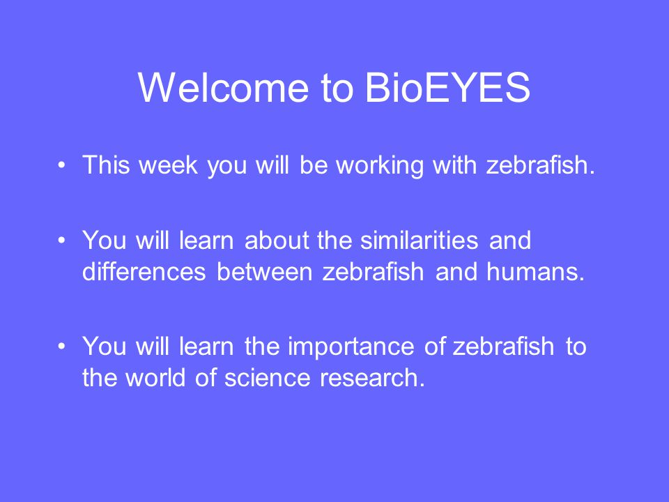 Why Zebrafish.They have a heart, eyes, and blood - Just like us.