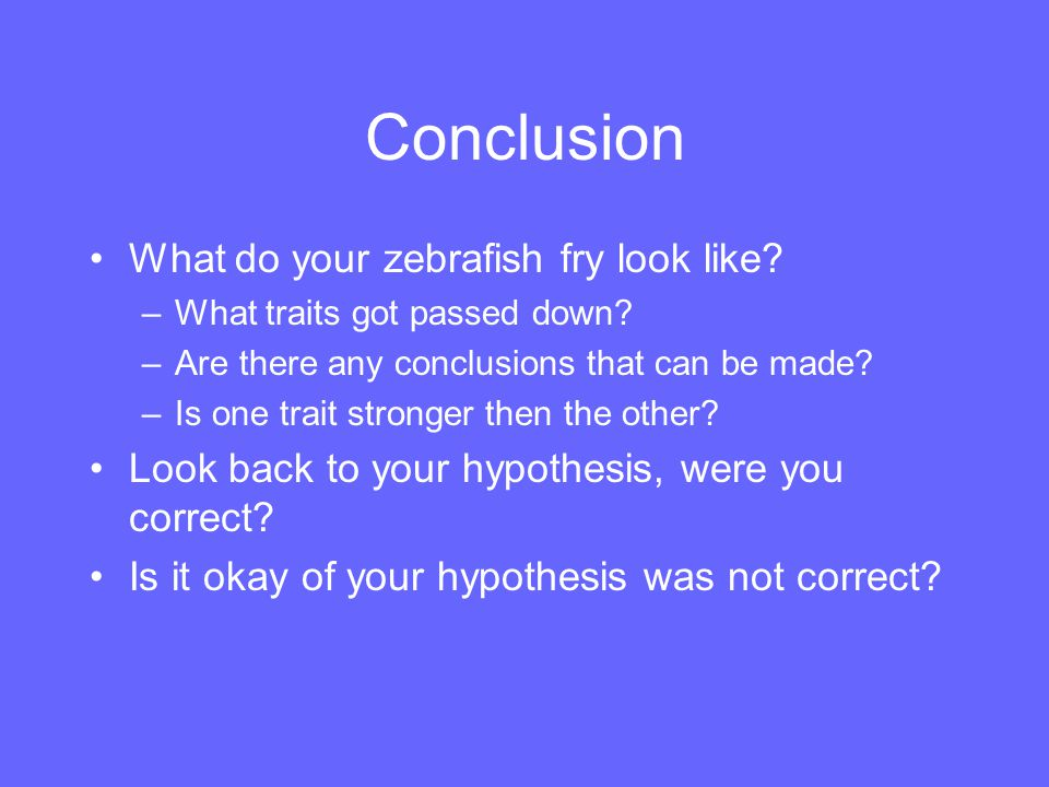Conclusion What do your zebrafish fry look like? –What traits got passed down? –Are there any conclusions that can be made? –Is one trait stronger the