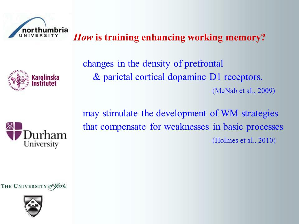 How is training enhancing working memory? changes in the density of prefrontal & parietal cortical dopamine D1 receptors. (McNab et al., 2009) may sti