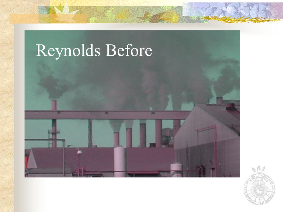 Reynolds Before