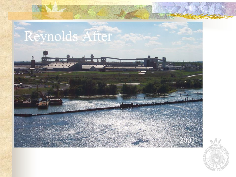 Reynolds After 2001