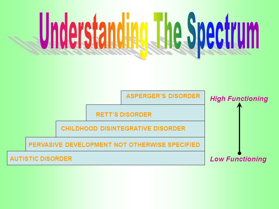RETTS DISORDER ASPERGERS DISORDER CHILDHOOD DISINTEGRATIVE DISORDER PERVASIVE DEVELOPMENT NOT OTHERWISE SPECIFIED AUTISTIC DISORDER Low Functioning Hi