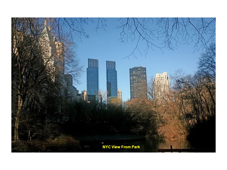 NYC View From Park