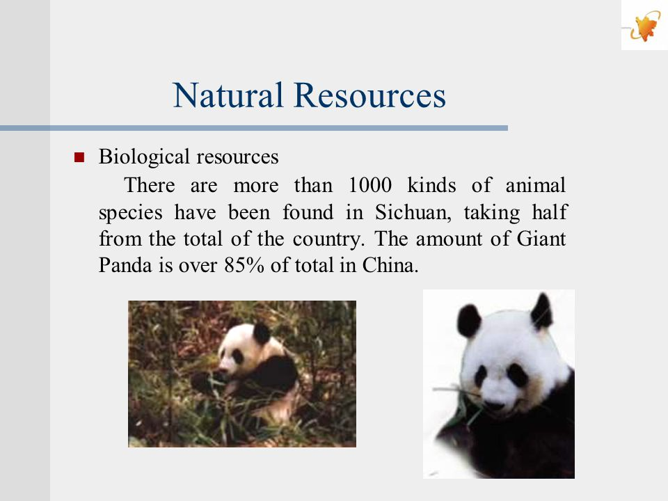 Natural Resources Biological resources There are more than 1000 kinds of animal species have been found in Sichuan, taking half from the total of the country.
