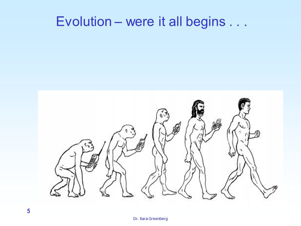 Dr. Sara Greenberg 5 Evolution – were it all begins...