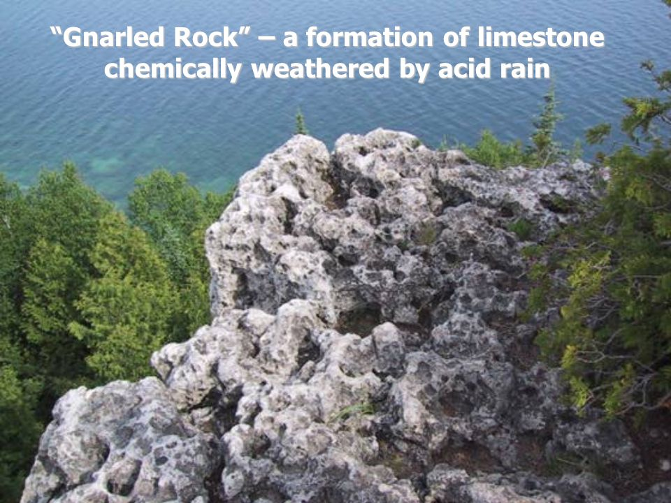 Gnarled Rock – a formation of limestone chemically weathered by acid rain