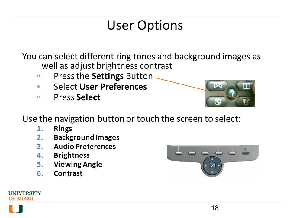 User Options 18 You can select different ring tones and background images as well as adjust brightness contrast Press the Settings Button Select User