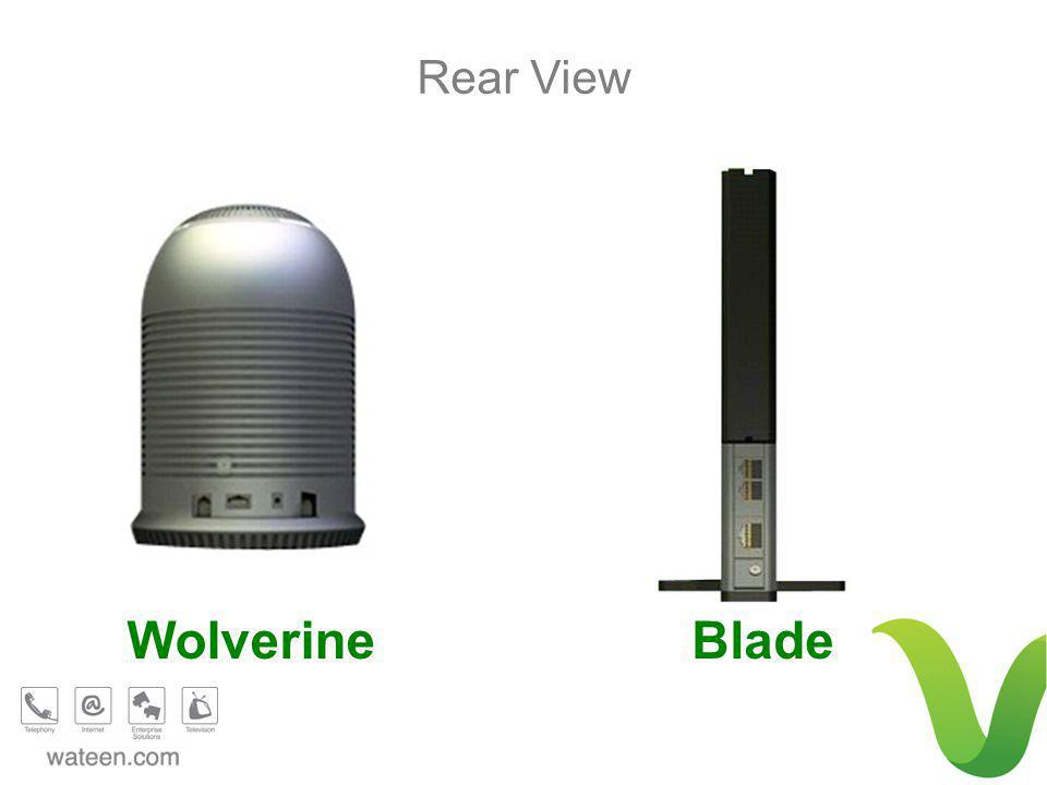 Rear View BladeWolverine
