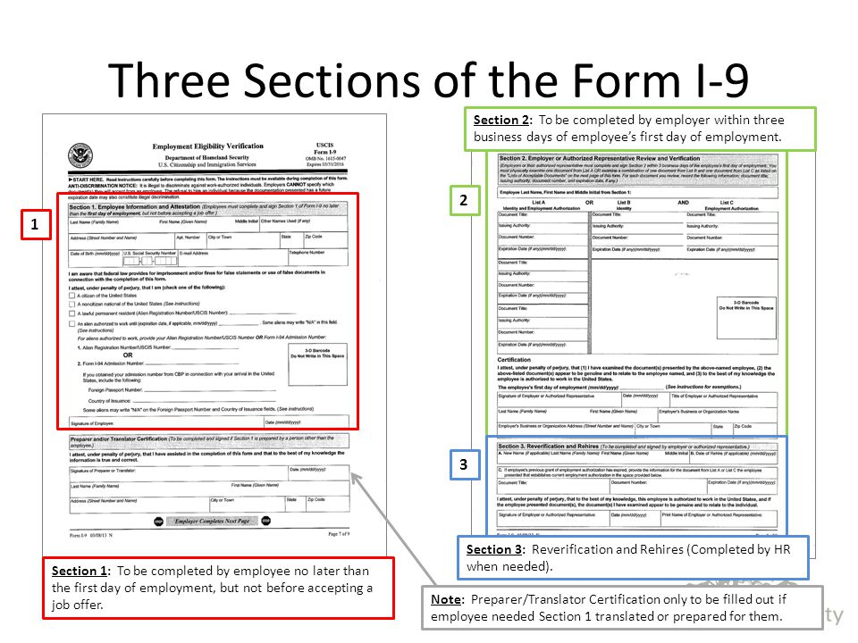 Three Sections of the Form I-9 Section 1: To be completed by employee no later than the first day of employment, but not before accepting a job offer.