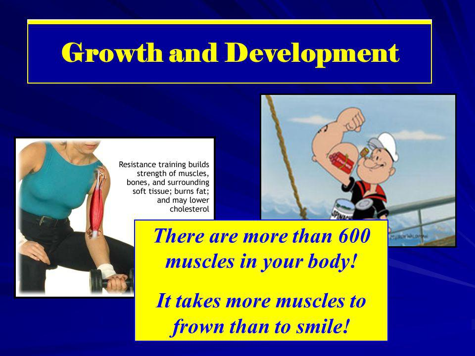 Muscular System There are more than 600 muscles in your body! It takes more muscles to frown than to smile! Growth and Development