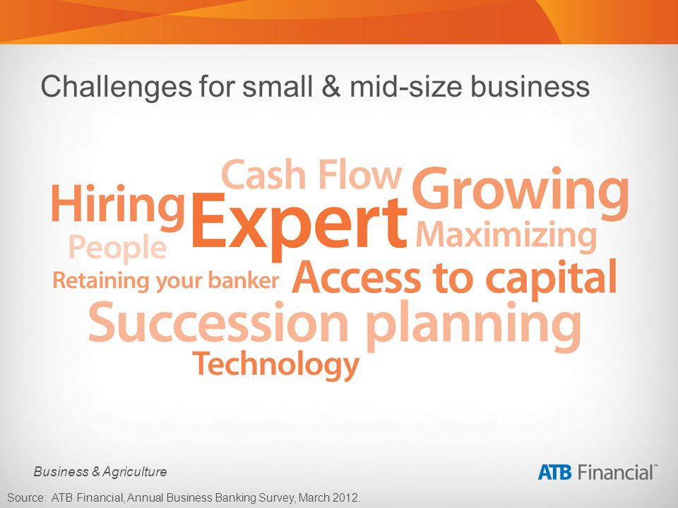 Business & Agriculture Challenges for small & mid-size business Source: ATB Financial, Annual Business Banking Survey, March 2012.