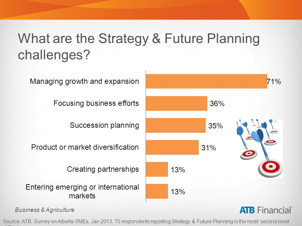 Business & Agriculture What are the Strategy & Future Planning challenges.