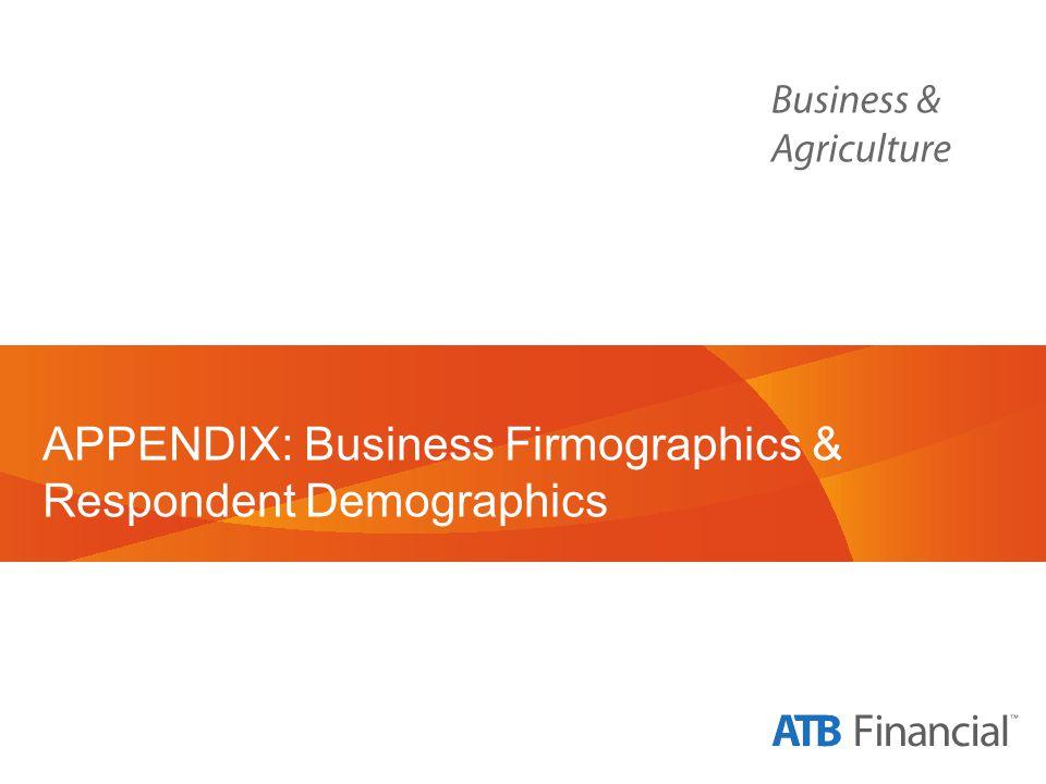 APPENDIX: Business Firmographics & Respondent Demographics