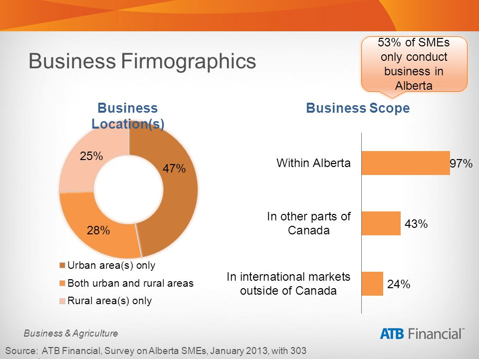 Business & Agriculture Business Firmographics Source: ATB Financial, Survey on Alberta SMEs, January 2013, with 303 respondents.