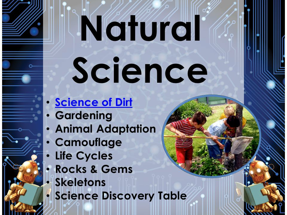 Natural Science Science of Dirt Gardening Animal Adaptation Camouflage Life Cycles Rocks & Gems Skeletons Science Discovery Table