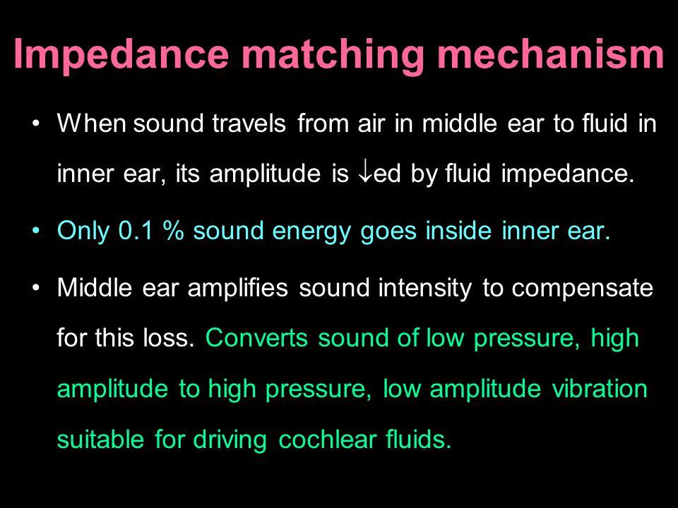 Ossicular break + intact T.M. = 55-60 dB loss Ossicular break + T.M. perforated = 45-50 dB loss