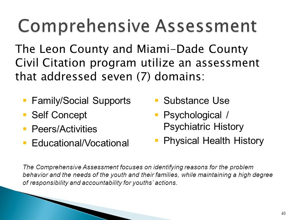 The Leon County and Miami-Dade County Civil Citation program utilize an assessment that addressed seven (7) domains: Family/Social Supports Self Conce