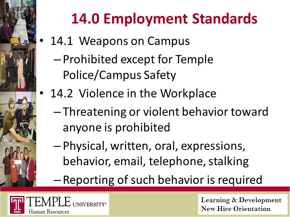 Learning & Development New Hire Orientation 14.0 Employment Standards 14.1 Weapons on Campus – Prohibited except for Temple Police/Campus Safety 14.2 Violence in the Workplace – Threatening or violent behavior toward anyone is prohibited – Physical, written, oral, expressions, behavior, email, telephone, stalking – Reporting of such behavior is required
