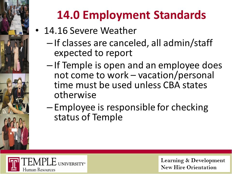 Learning & Development New Hire Orientation 14.0 Employment Standards 14.16 Severe Weather – If classes are canceled, all admin/staff expected to report – If Temple is open and an employee does not come to work – vacation/personal time must be used unless CBA states otherwise – Employee is responsible for checking status of Temple