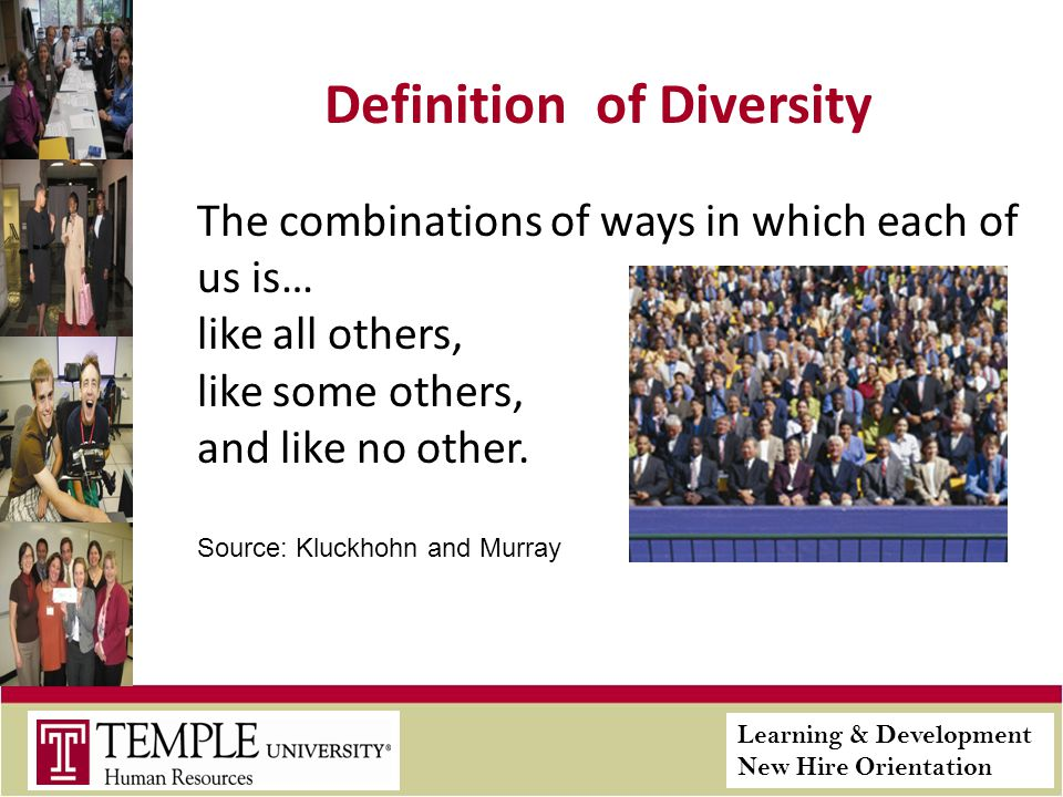 Learning & Development New Hire Orientation Definition of Diversity The combinations of ways in which each of us is… like all others, like some others, and like no other.