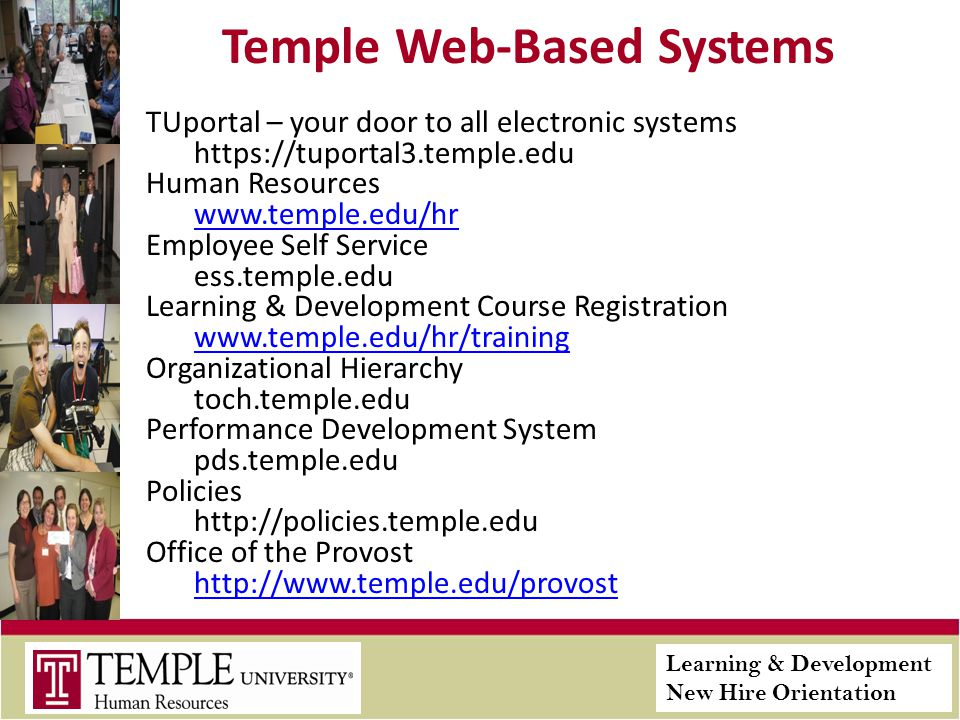 Learning & Development New Hire Orientation Temple Web-Based Systems TUportal – your door to all electronic systems https://tuportal3.temple.edu Human Resources www.temple.edu/hr Employee Self Service ess.temple.edu Learning & Development Course Registration www.temple.edu/hr/training Organizational Hierarchy toch.temple.edu Performance Development System pds.temple.edu Policies http://policies.temple.edu Office of the Provost http://www.temple.edu/provost