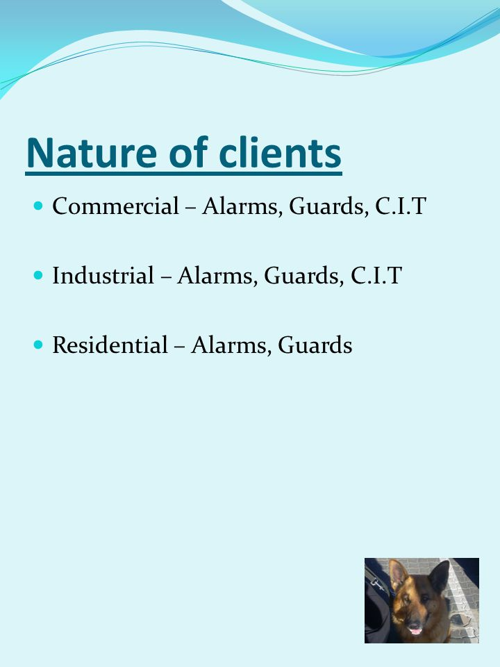 Nature of clients Commercial – Alarms, Guards, C.I.T Industrial – Alarms, Guards, C.I.T Residential – Alarms, Guards