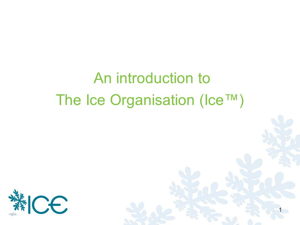 An introduction to The Ice Organisation (Ice) 1
