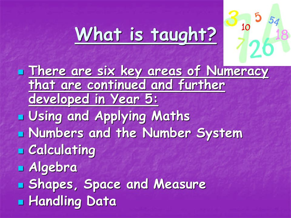 Numeracy Numeracy groups are organised into four groups across the year. Numeracy groups are organised into four groups across the year. 4 times a wee