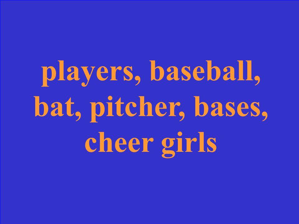 things you see at a baseball game