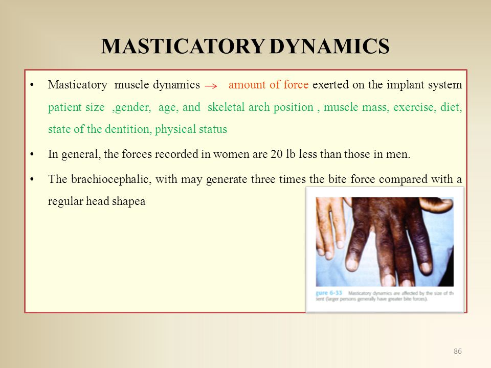 MASTICATORY DYNAMICS Masticatory muscle dynamics amount of force exerted on the implant system patient size,gender, age, and skeletal arch position, m